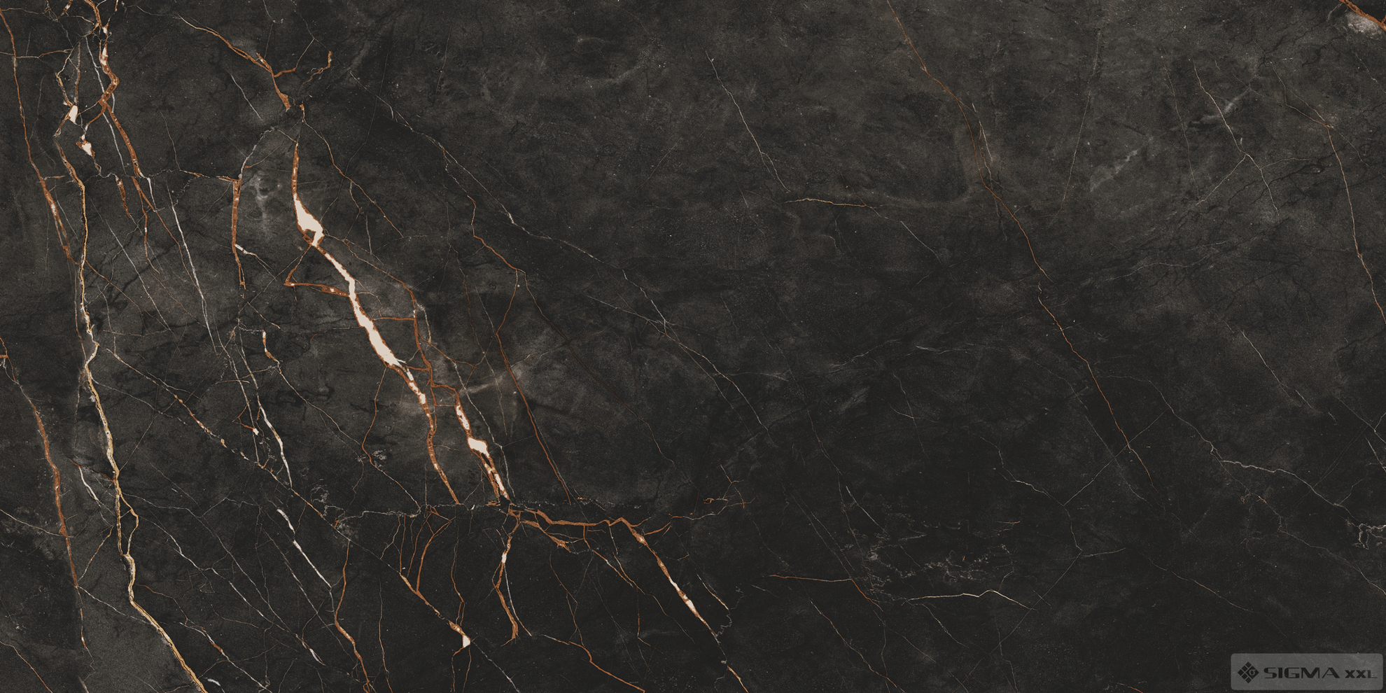 Imagine Shinestone Black POL 119,8x59,8