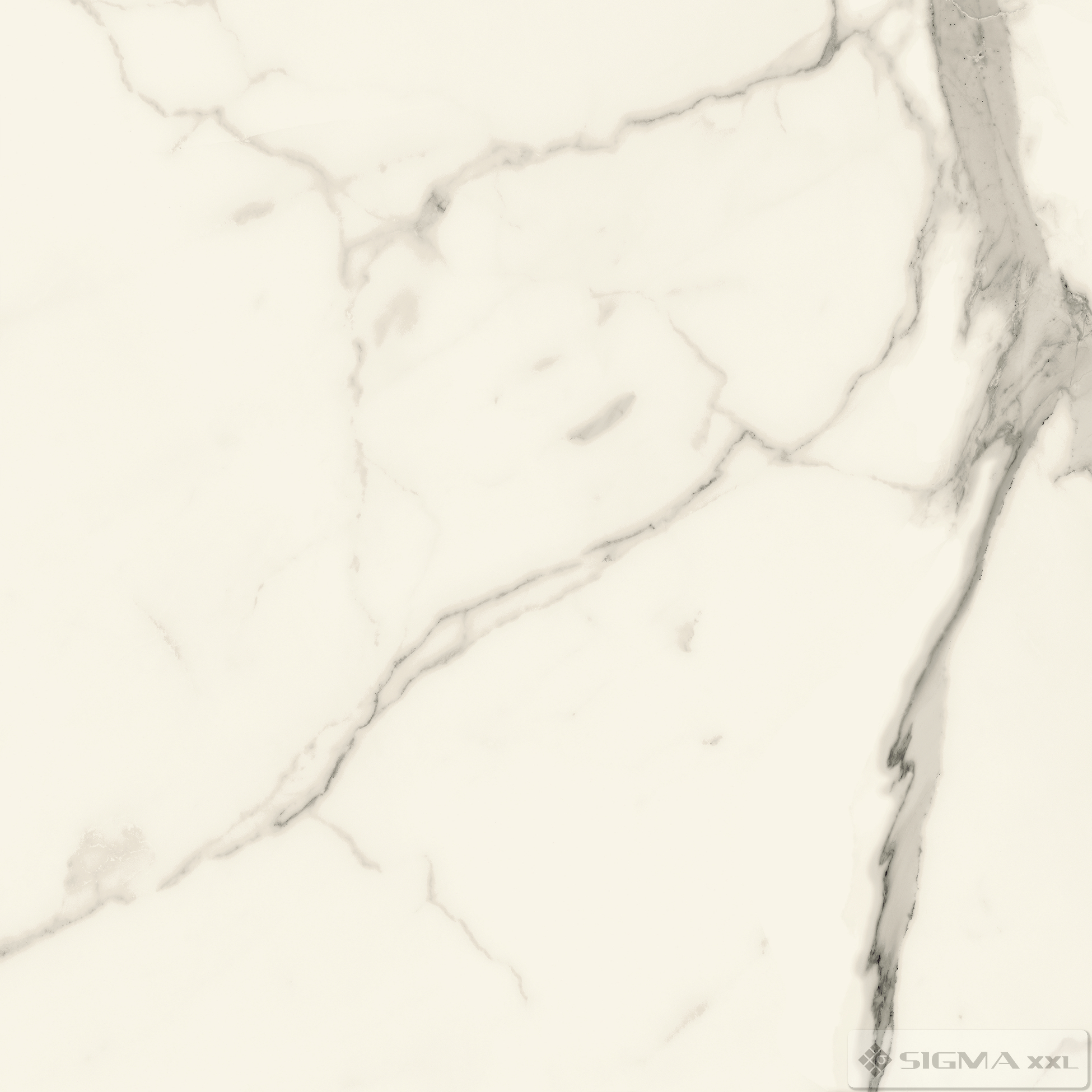 Imagine Gresie Pietrasanta MAT 79,8x79,8