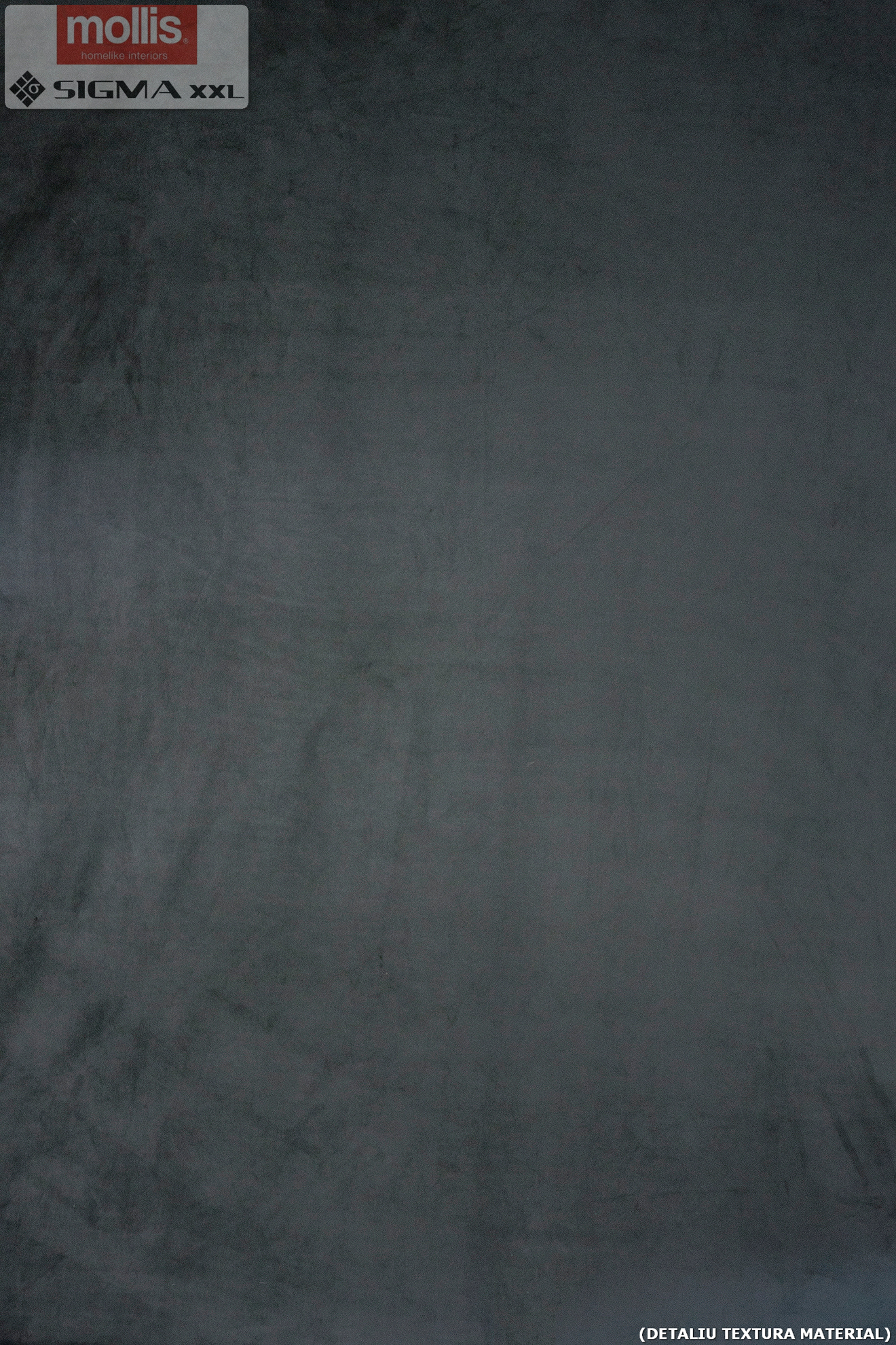Imagine Mollis Abies 02 Dark Storm (Paralelogram A - 30x15 cm)