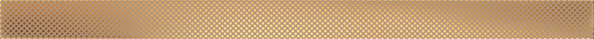 Imagine List Decor Selvo Gold 60,8x4